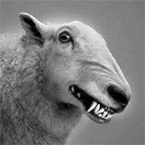 pro NRW - der Wolf im Schafspelz